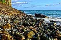 Clovelly coast