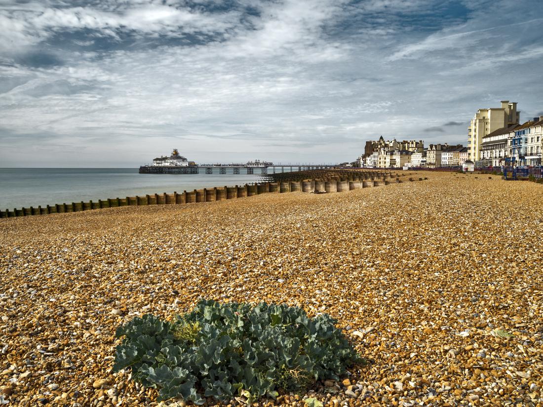Eastbourne East Beach